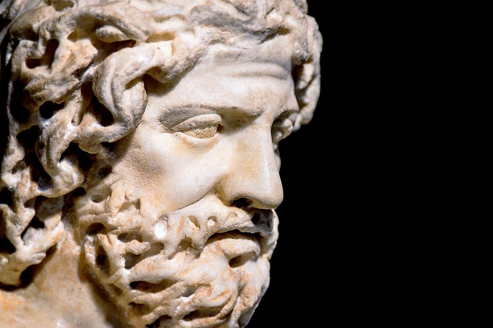 the bearded face of a Greek sculpture